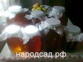 Купить качественный мед недорого в Москве. Народный сад