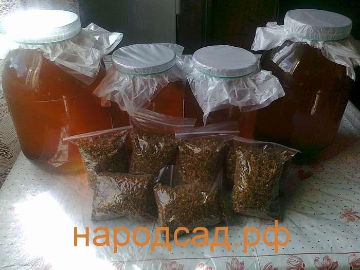 Купить качественный мед в Москве недорого. Народсад.рф
