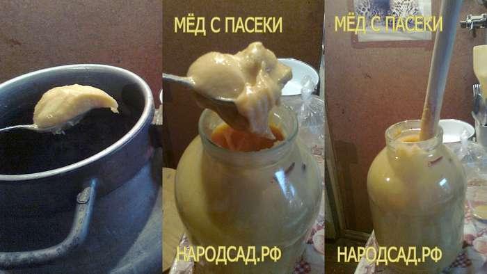Фото качественного меда. НАРОДСАД,РФ
