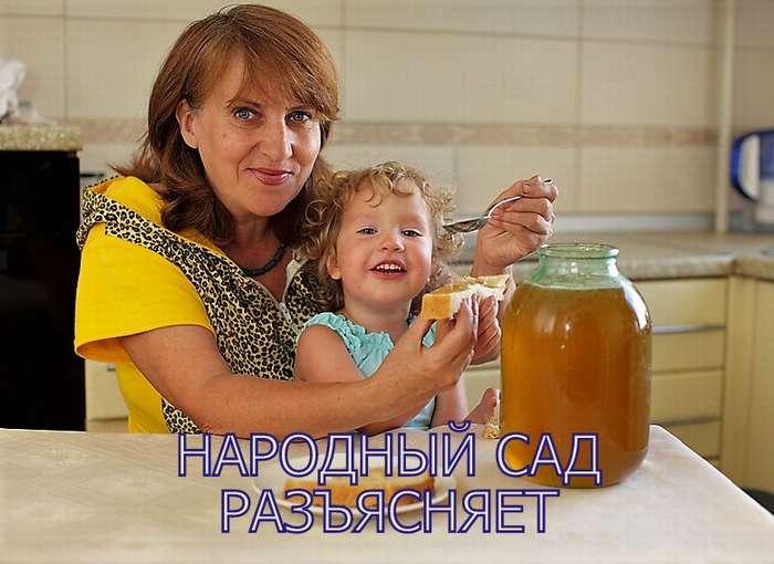 Народный сад. Должен ли качественный настоящий мед першить в горле. Народный сад